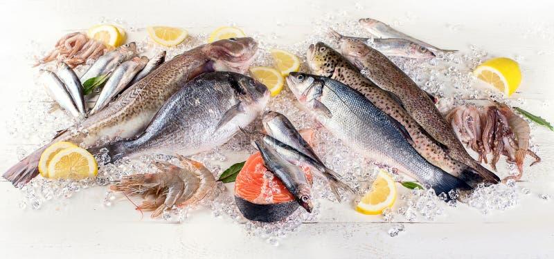 Peixes frescos e marisco no fundo de madeira branco Comer saudável imagem de stock royalty free