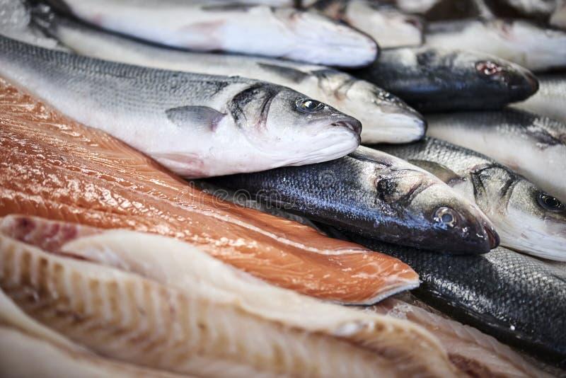 Peixes frescos em um contador do colo fotografia de stock