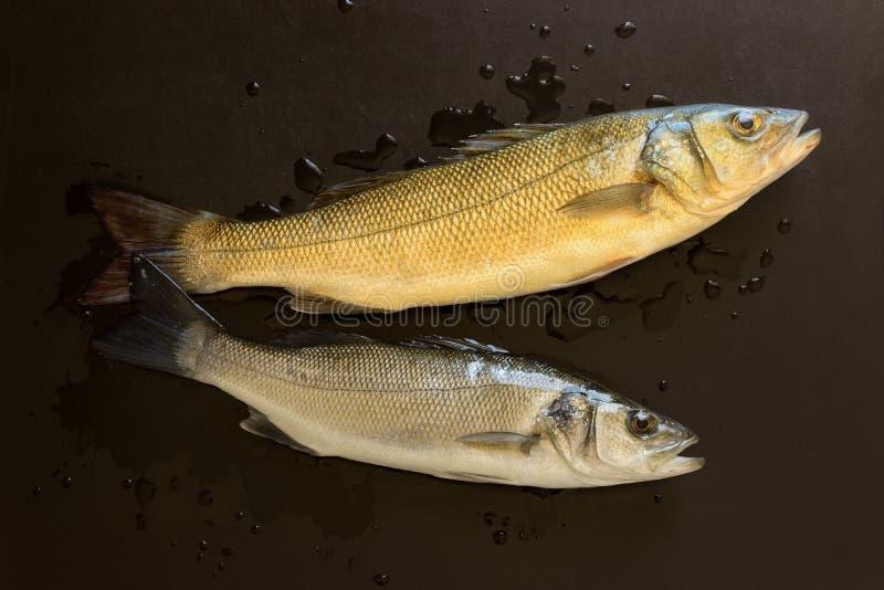 Peixes frescos em uma tabela de pedra preta Alimento saudável do conceito, marisco fresco imagens de stock royalty free