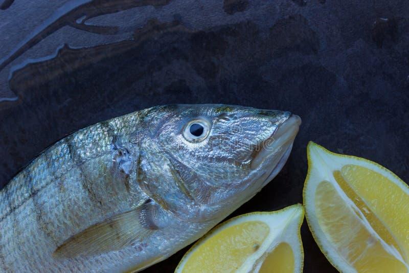 Peixes frescos em uma tabela de pedra preta Fatias de limão suculento Conce fotografia de stock