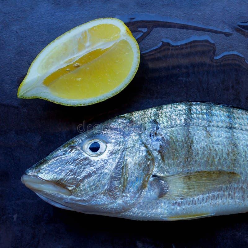 Peixes frescos em uma tabela de pedra preta Fatias de limão suculento Conce imagem de stock royalty free