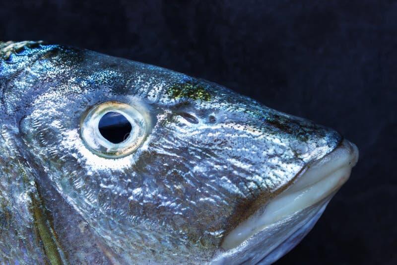 Peixes frescos em uma tabela de pedra preta Sinais do conceito do freshn dos peixes imagens de stock