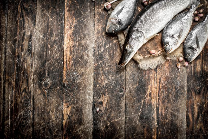 Peixes frescos na placa fotos de stock royalty free