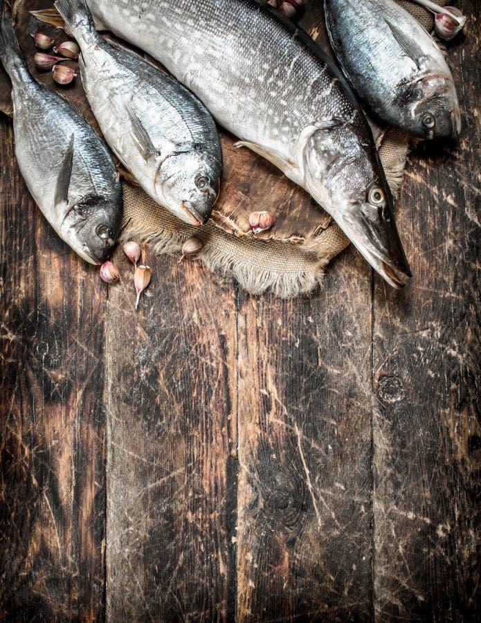 Peixes frescos na placa imagens de stock royalty free