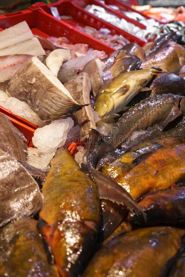 Peixes frescos para a venda no mercado do marisco fotos de stock