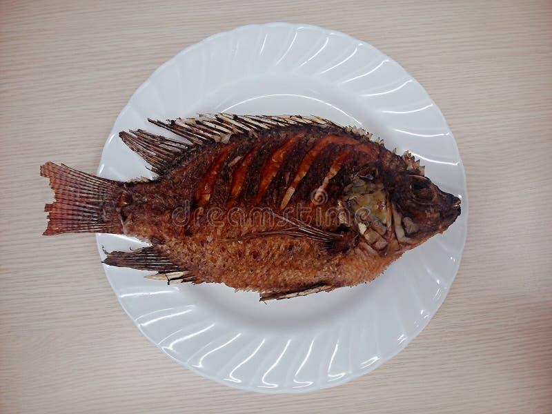 Peixes fritados foto de stock royalty free