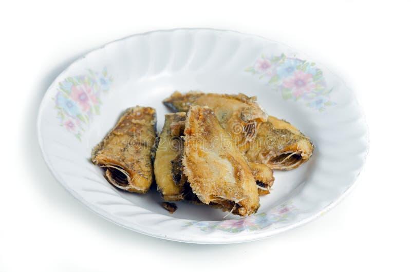 Peixes fritados & x28; Pectoralis& x29 de Trichogaster; no prato fotos de stock royalty free