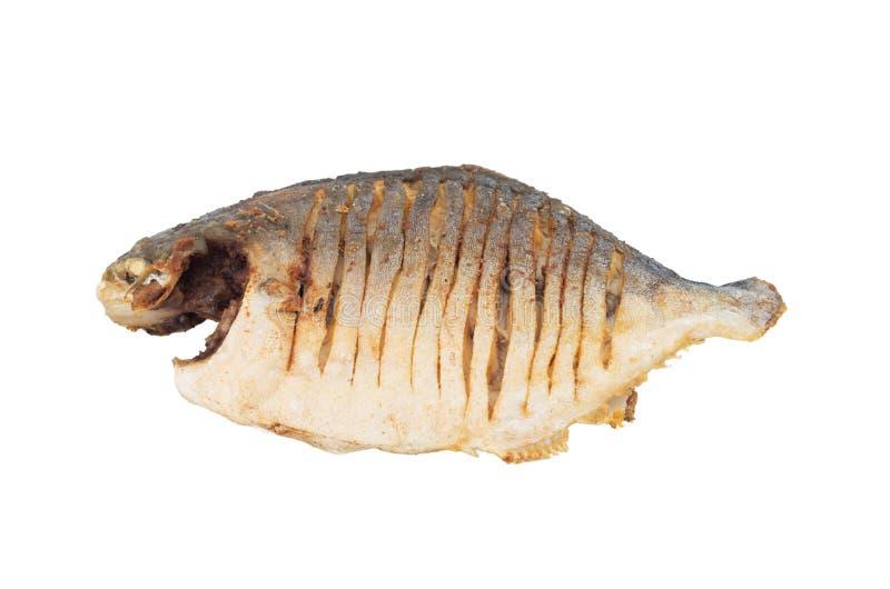 Peixes fritados vietnamita imagem de stock