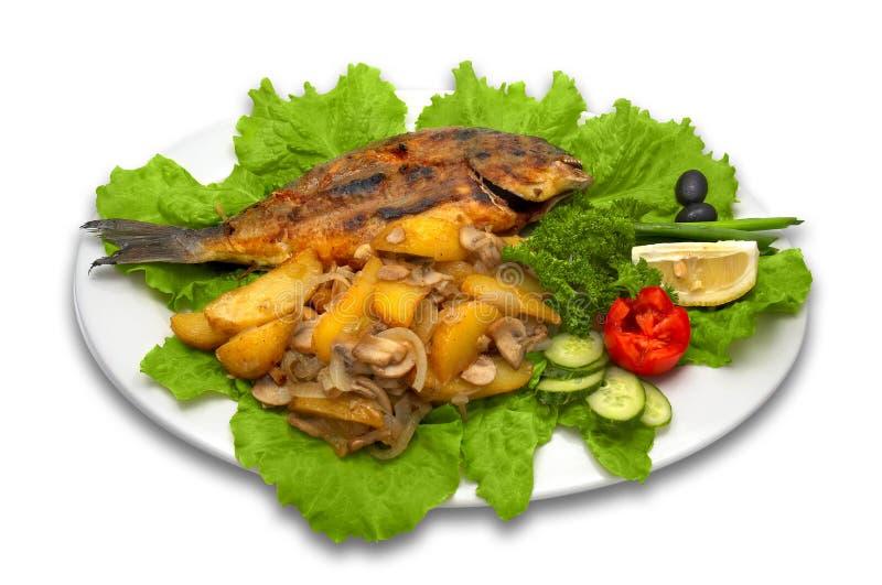 Peixes griled inteiros do dorada imagem de stock