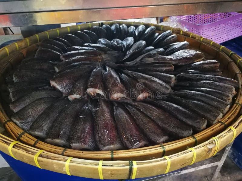 Peixes listrados do snakehead de peixes secos Smoked foto de stock