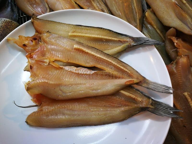 Peixes listrados do snakehead de peixes secos Smoked imagens de stock royalty free