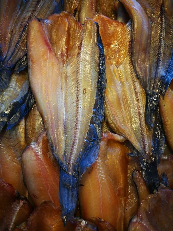Peixes listrados do snakehead de peixes secos Smoked fotos de stock