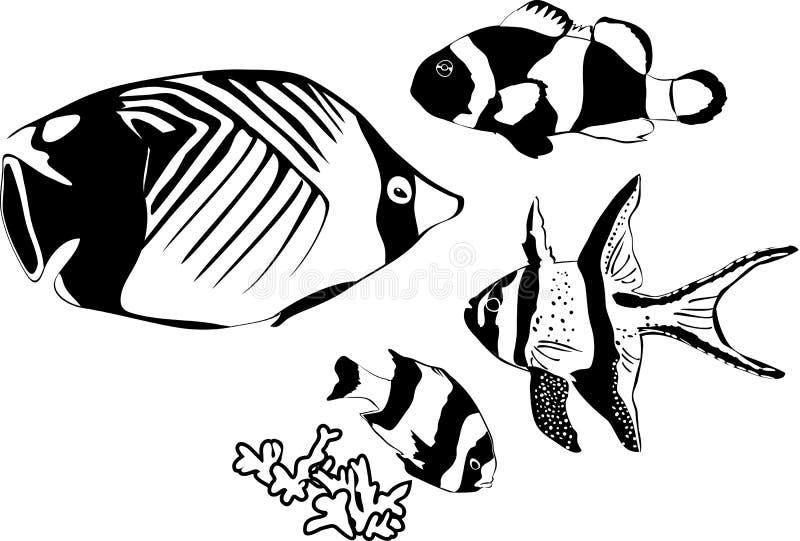 Peixes marinhos ilustração stock