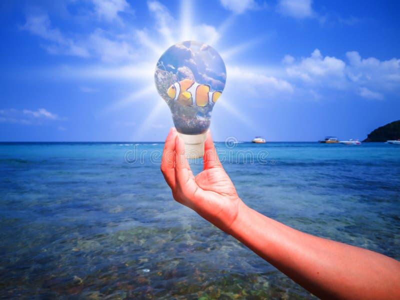 Peixes na lâmpada que está nas mãos dos povos no mar foto de stock