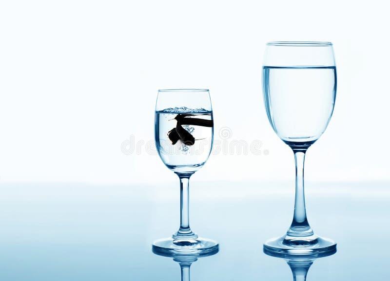 Peixes no vidro bebendo que procura o conceito da elevação e da melhoria imagens de stock