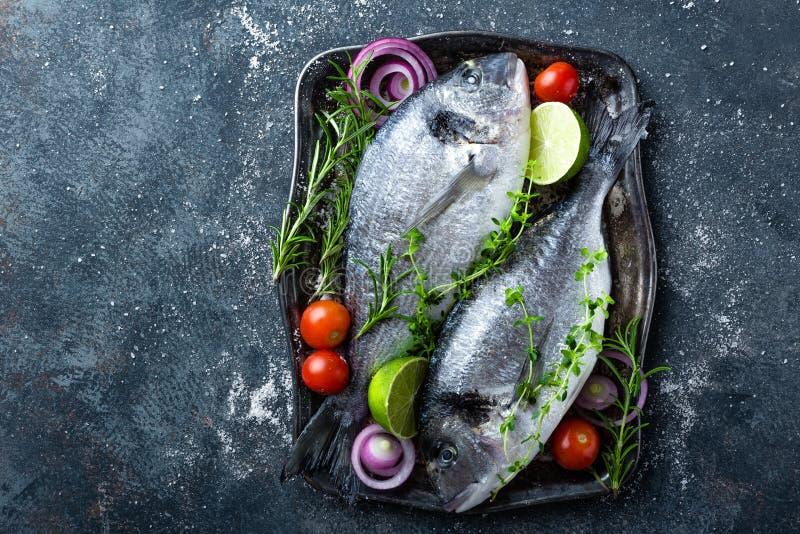 Peixes ou sargo cru fresco de Dorado com os ingredientes para cozinhar no fundo escuro fotografia de stock royalty free