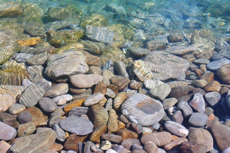 Peixes pequenos de flutuação em um fundo de seixos do mar sob a água na praia foto de stock