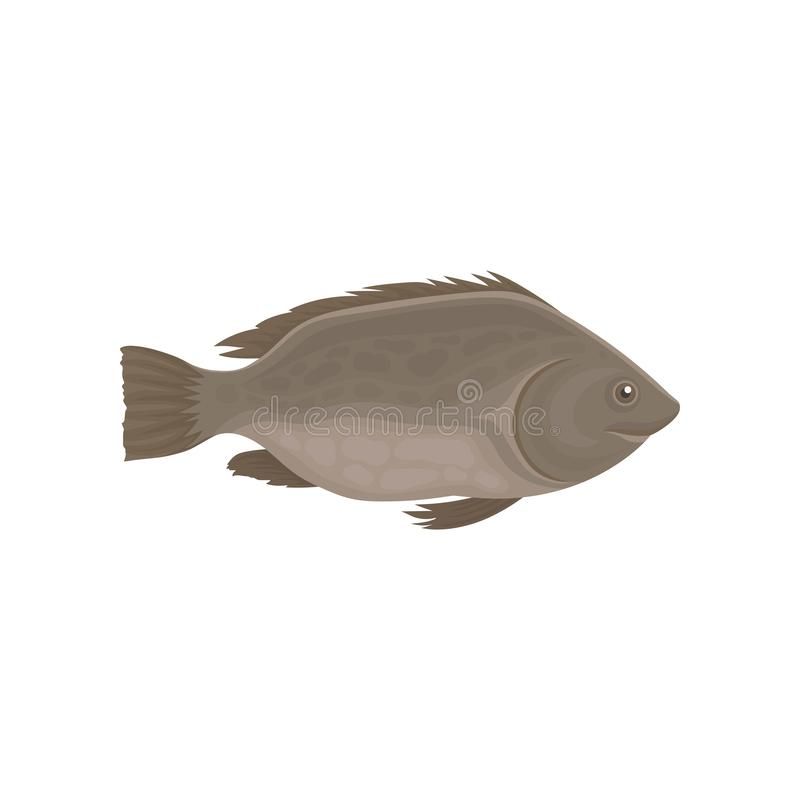 Peixes pequenos do mar ou do rio com aletas marrons Animal marinho Tema do marisco Vetor liso para o empacotamento do produto ou  ilustração royalty free