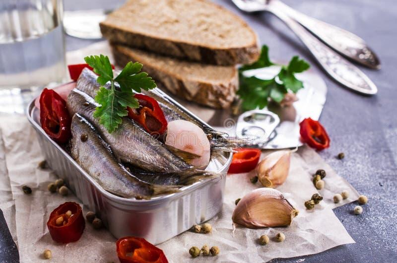 Peixes pequenos na salmoura imagens de stock royalty free