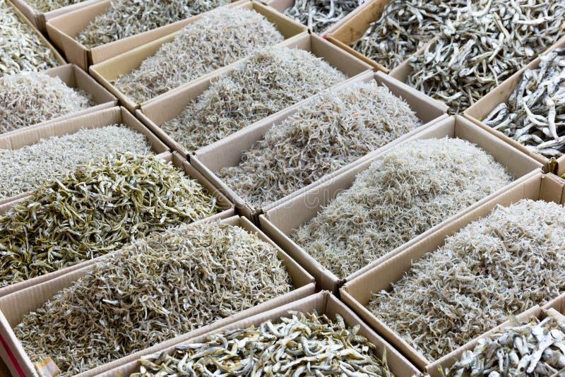 Peixes pequenos secados da anchova fotografia de stock
