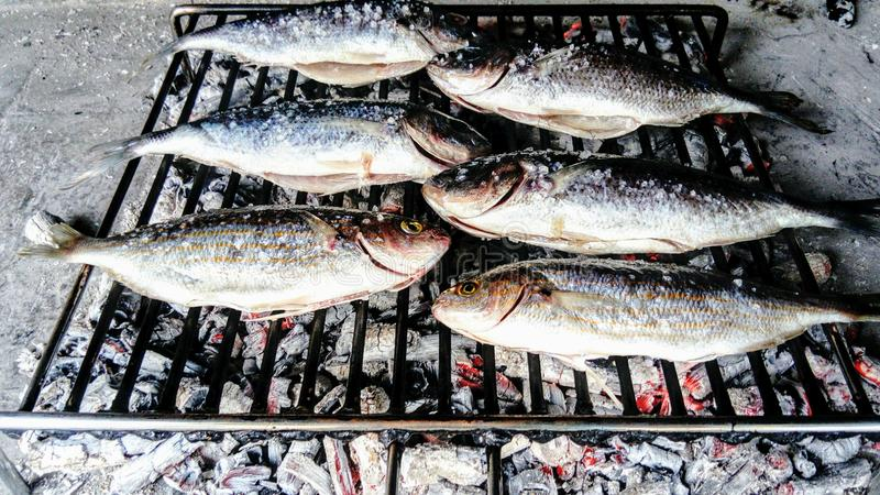 Peixes que roasting no incêndio imagens de stock