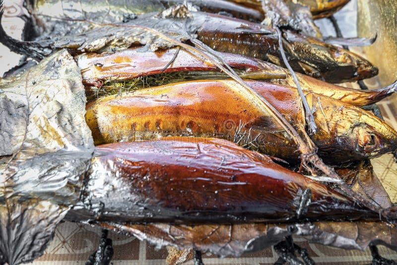 Peixes quentes da cavala fumado na grade Peixes perto recentemente cozinhados acima foto de stock royalty free