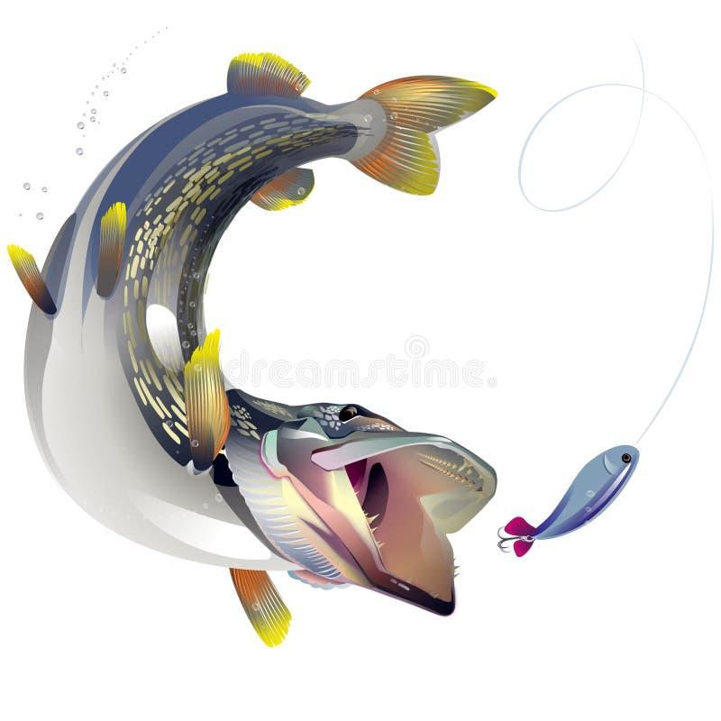 Peixes Ravenous ilustração stock