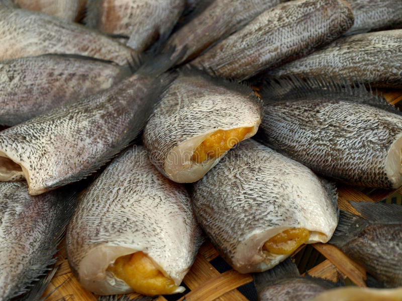 Peixes salgados secados foto de stock