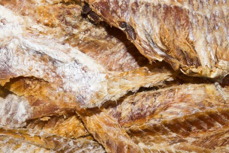 Peixes secados à cerveja Purified secou peixes imagem de stock
