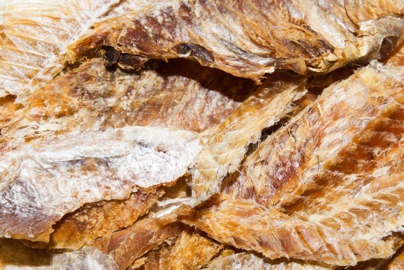 Peixes secados à cerveja Purified secou peixes fotografia de stock royalty free