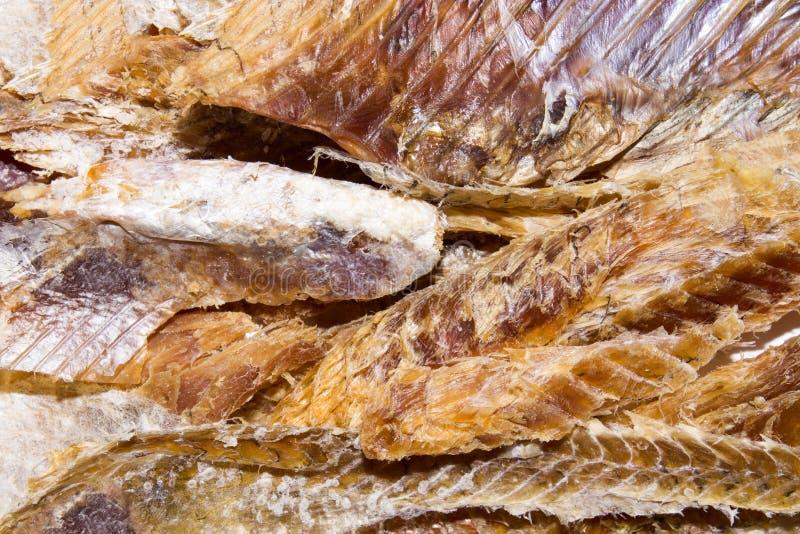 Peixes secados à cerveja Purified secou peixes foto de stock