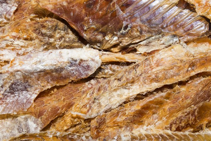 Peixes secados à cerveja Purified secou peixes fotos de stock royalty free