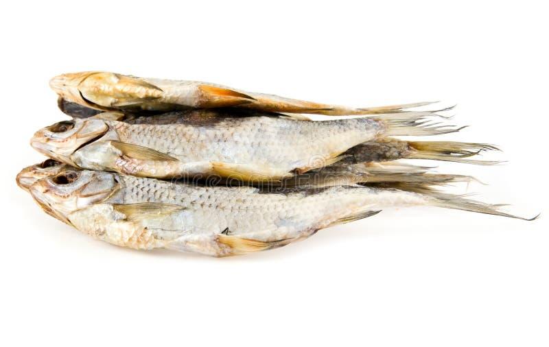 Peixes secados imagens de stock