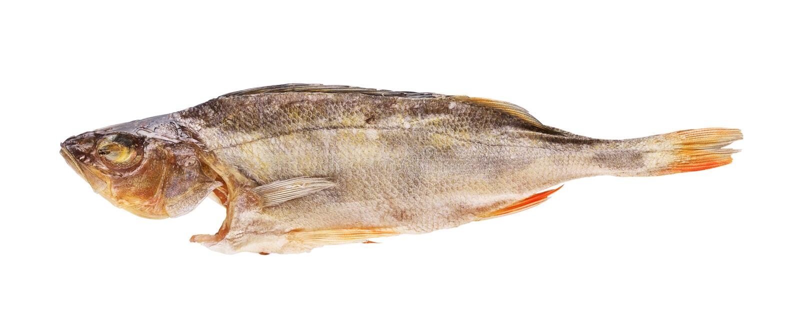 Peixes secados imagens de stock royalty free
