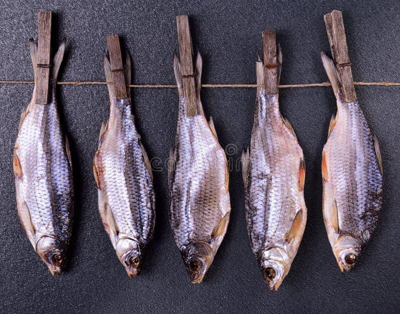 Peixes secados que penduram em uma corda imagens de stock royalty free