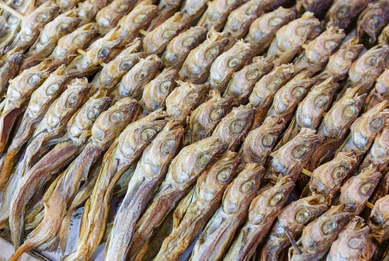 Peixes secos de sal imagens de stock