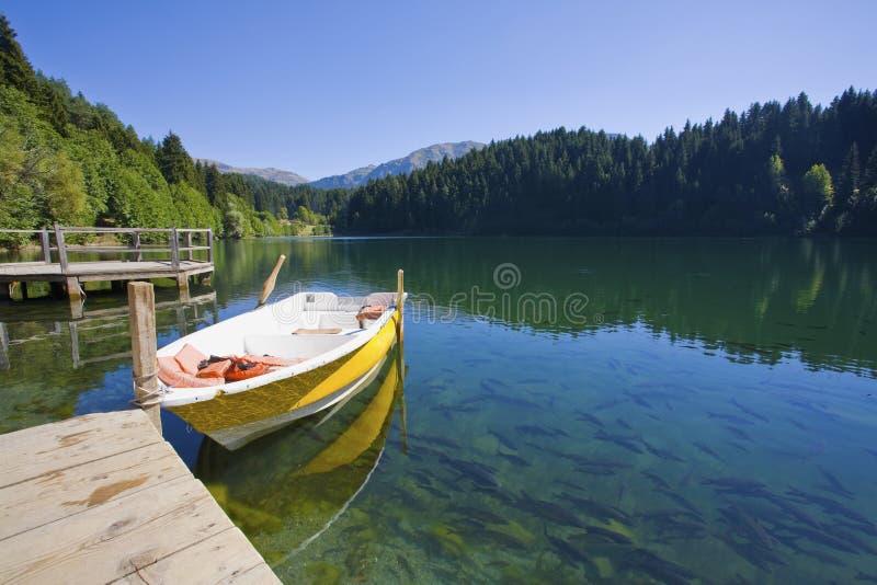 Peixes sob o barco imagem de stock
