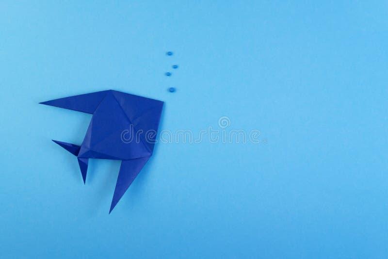 Peixes tropicais do origâmi no fundo minimalistic dos azul-céu imagem de stock