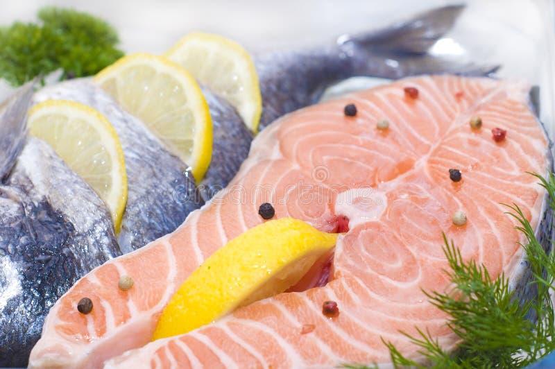 Peixes vermelhos imagem de stock