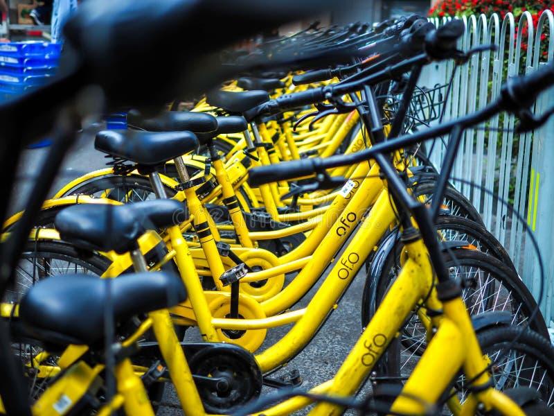 PEKÍN, CHINA - 27 DE MARZO DE 2018: Las bicis de Ofo son la nueva bici que comparte a la compañía en China Ofo es una bici popula imagenes de archivo