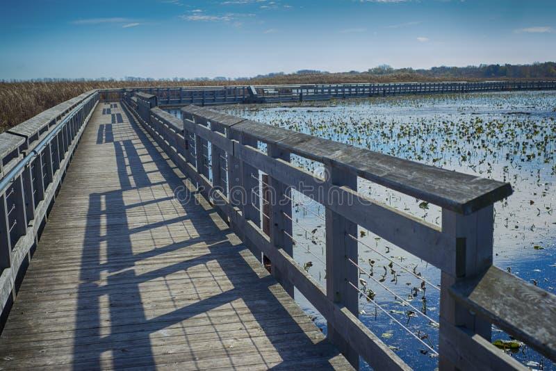 Peka den Pelee nationalparken och strandpromenaden i nedgången, Ontario, Ca royaltyfria bilder