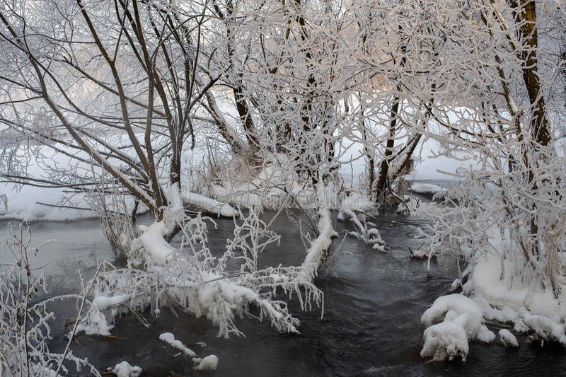 Pekhorka River with hoarfrost on the trees. River Pekhorka in Akatova, frosty winter evening with hoarfrost on the trees, from the warm water stock images