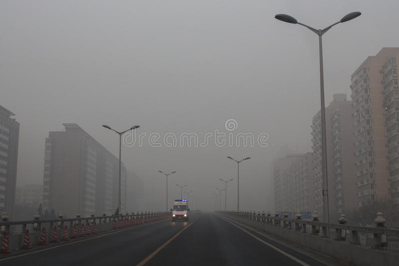 Pekin pomarańcze rząd wszczynający ostrzeżenie fotografia royalty free