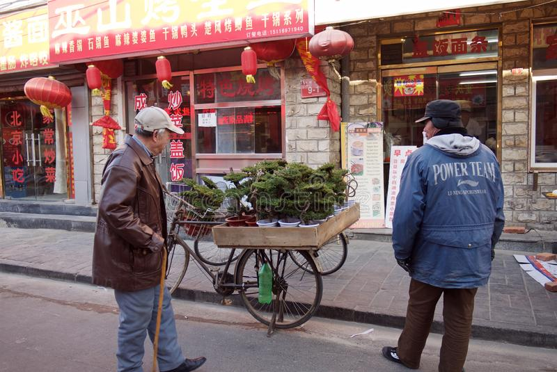 Peking, China - 10. Januar 2011: Mann verkauft Bonsaibäume in der Straße von Peking lizenzfreie stockfotografie