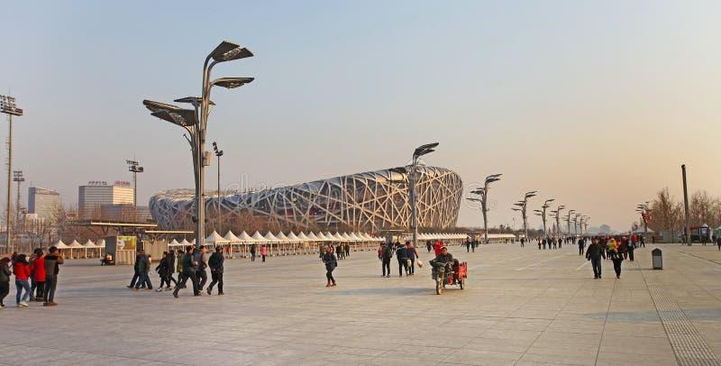 PekingmedborgareOlympic Stadium /Bird s rede arkivfoto