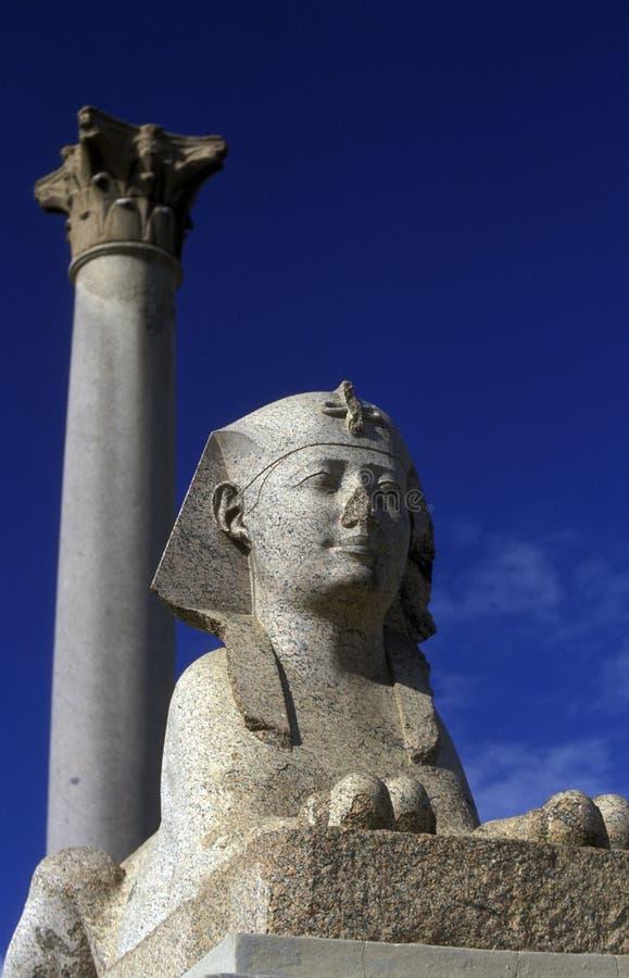 PELARE FÖR AFRIKA EGYPTEN ALEXANDRIA STAD POMPEY royaltyfria bilder