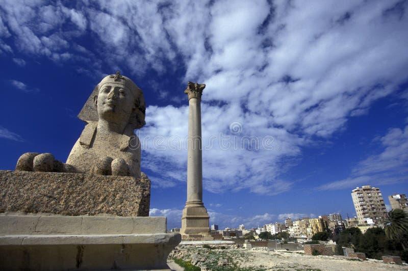 PELARE FÖR AFRIKA EGYPTEN ALEXANDRIA STAD POMPEY royaltyfria foton