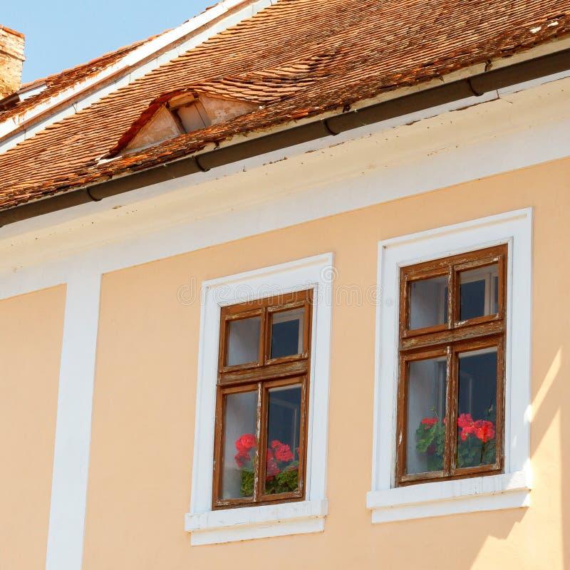 Pelargon bak träfönster i ett hus med ett belagt med tegel tak royaltyfri bild