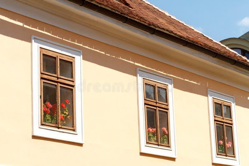 Pelargon bak tr?f?nster i ett hus med ett belagt med tegel tak royaltyfri bild