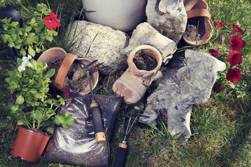 Pelargonium del Ipomoea y herramientas que cultivan un huerto fotografía de archivo